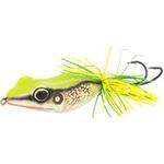 Mystic zhaba frog 1 back 375