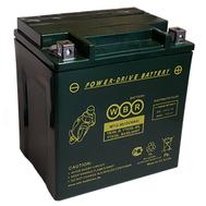 Аккумулятор MTG 12-30 (YIX30L-BS)